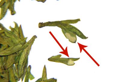 pollen-on-leaf